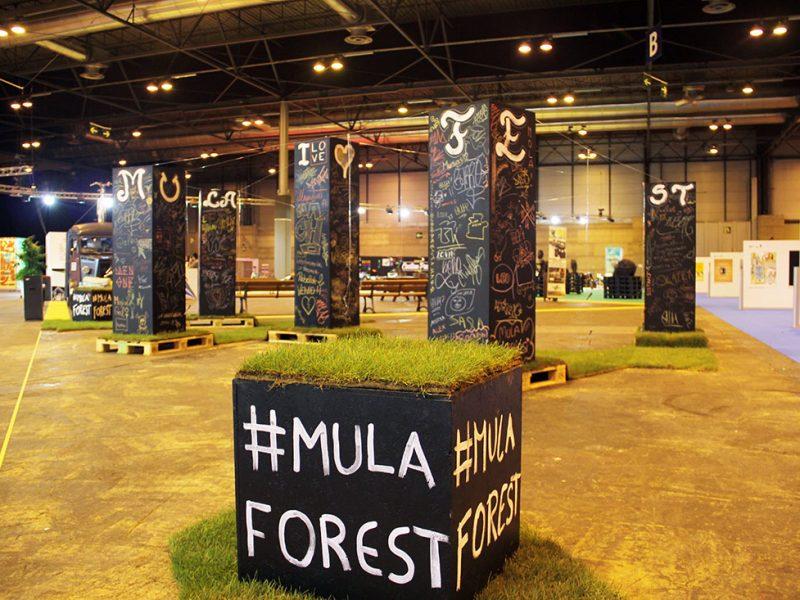 Mulaforest mulafest 2017